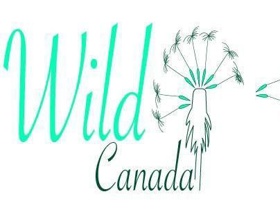 Wild Canada (End of term assignment)