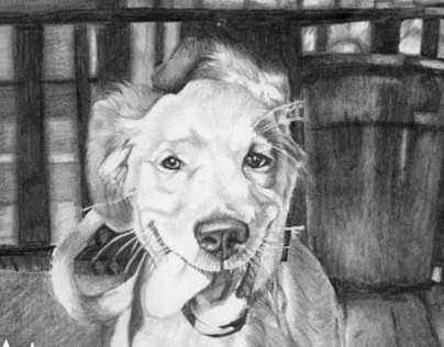 Chip Graphite Drawing