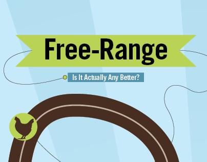 Free Range Eggs, Pros vs. Cons