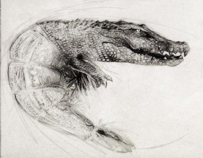 Animals Engraving