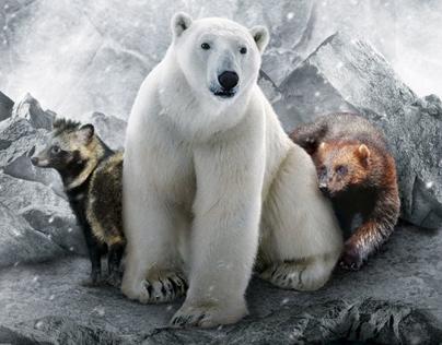 Launch of Frozen Tundra, Singapore Zoo