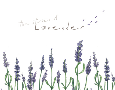The Stories of Lavender | Pollenina