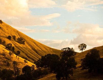 Mike Morgan's Fine Art Portfolio: California