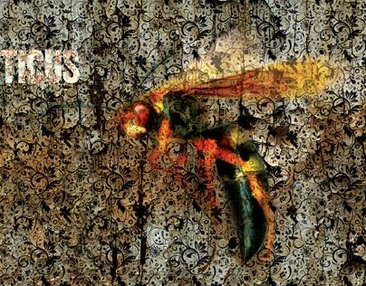 Atticus: Music For Wasps - Album Cover
