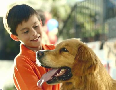Purina - Día del Perro (Purina's Dog Day)