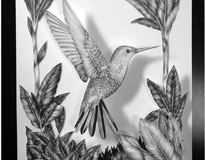 Illustrations - Peintures