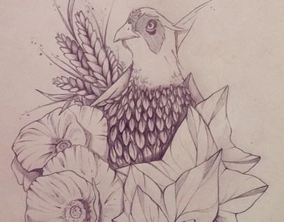 Male Pheasant // Concept progress
