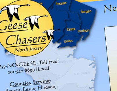 Geese Chasers North Jersey   Website