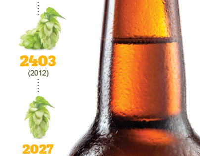 Visual Toy: Beer Consumption INFOGRAPHIC