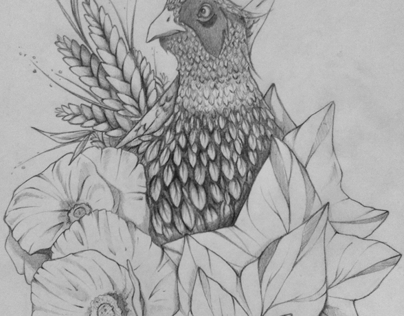 Male Pheasant // Completed concept