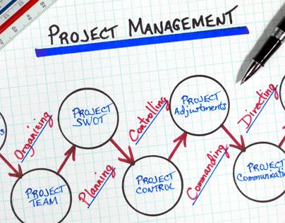 Project Coordination & Management