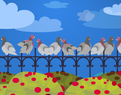 NYC Pigeons