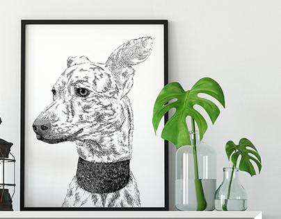 Animal illustrations for animal welfare