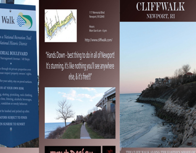 Brochure Project