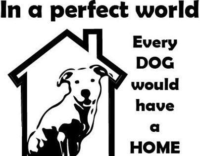 Pro Bono t-shirt design for local dog shelter