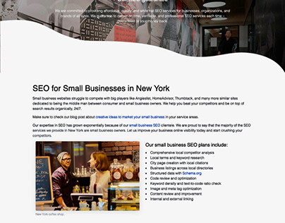 Landing page for SEO services in New York.