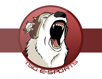 TSG E-Sports Retouch