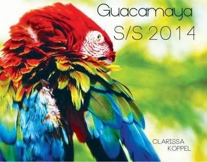 Intro to Textiles Final: Guacamaya Spring/Summer 2014