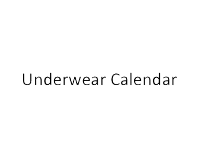 the underwear project