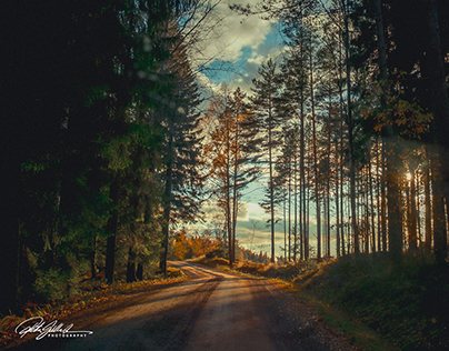 Country road in Kirkkonummi