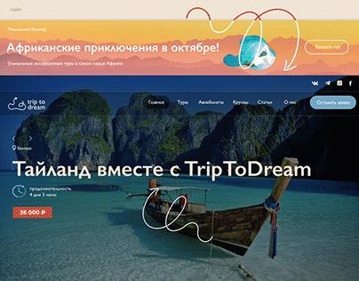 Фирменный стиль и сайт для TripToDream
