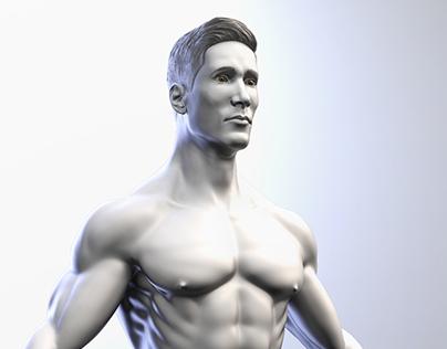Male Anatomical Base - Hombre / Man