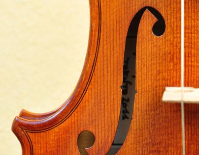 Gianmaria Stelzer Violin