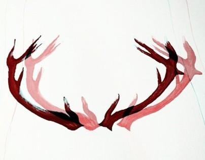"""""""deer antlers"""""""
