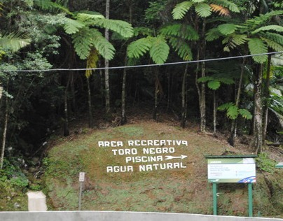 Entrance for the Recreational Area of Toro Negro