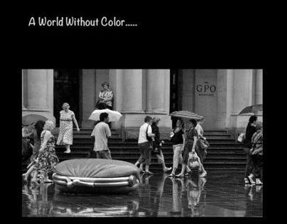 A World Without Color.....