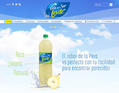 Levite - Website + canales sociales