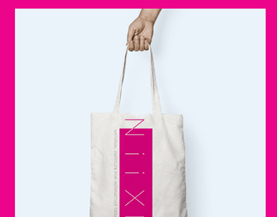 NiiXD-National Institute for Interactive Design