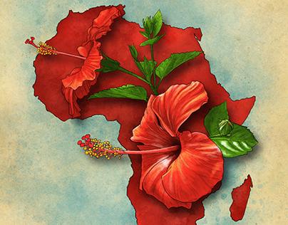 TBGC Botanical Illustrations