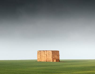 Fields 4: November