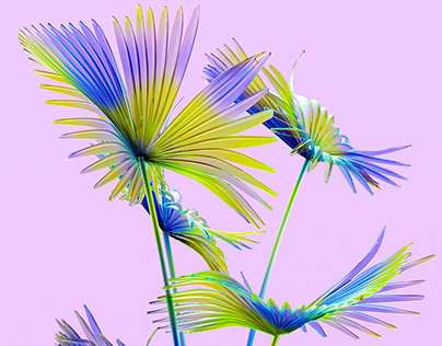 Rainbow Flower World