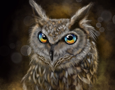 The New Owl