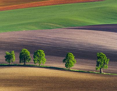 Moravian Landscapes