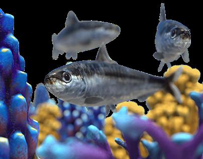 Underwater Orchestra
