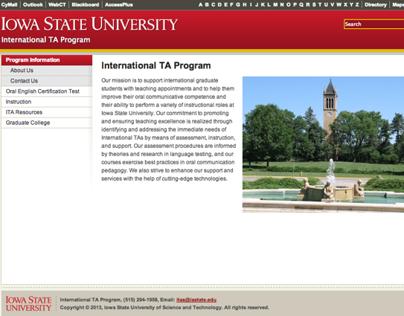 International TAs program Website
