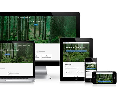 COMEXASSUR: WORDPRESS RESPONSIVE  WEBSITE DESIGN