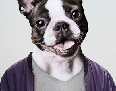A DOG'S LIFE / Et Hundeliv