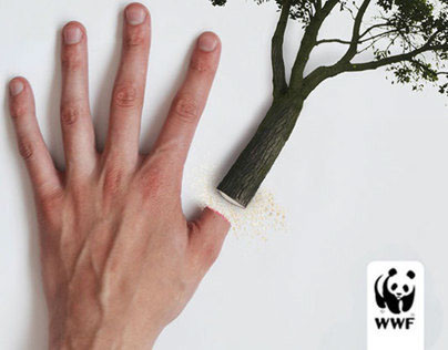 WWF Rainforest