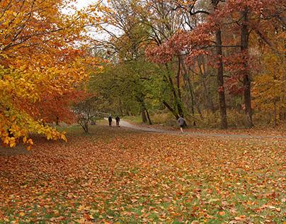 Rock Creek Park Pavillion