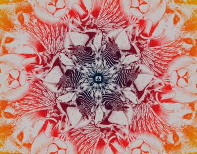 Desktopography 2013 / Flower of Life