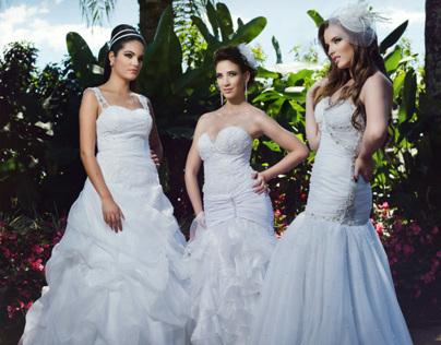 Bridal Editorial ( Color )