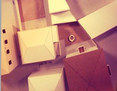 הבית הנעלם- פרויקט שימור במנשיה