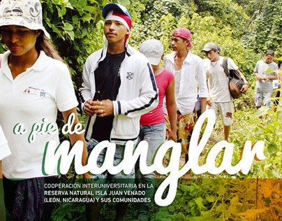A pie de manglar. Diseño editorial