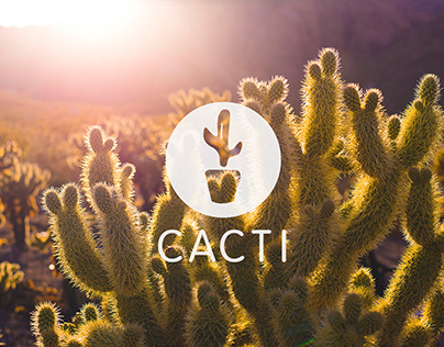 Cacti Brand Experience