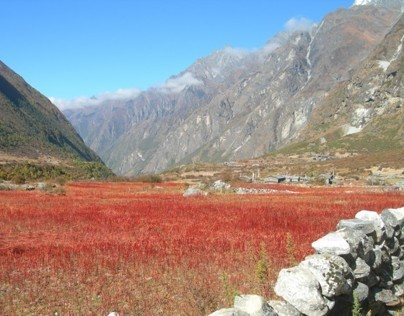 Paysages du Nepal