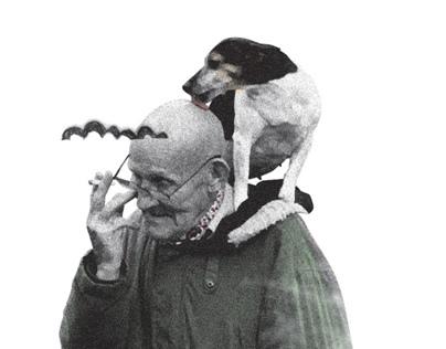 Old & Dog